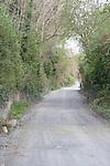 Laneway Delvin