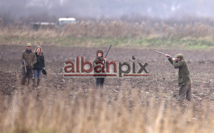©Albanpix.com-Picture by Jerry Daws.Prince Harry ,Prince William(right.) with (hat centre)kate Middleton on a shoot at the Sandringham estate 13-12-08