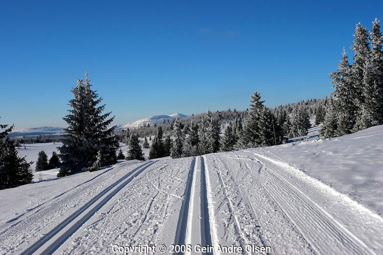 Fresh ski tracks in the Norwegian mountains