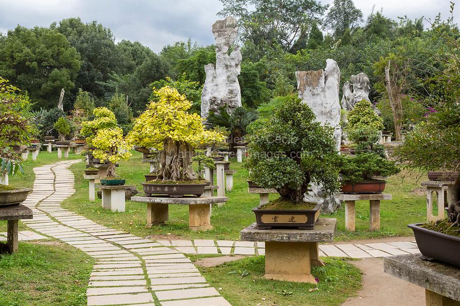 Guizhou Province, China.  Bonsai Garden, Yellow Fruit Tree (Huangguoshu) Waterfall Scenic Area.