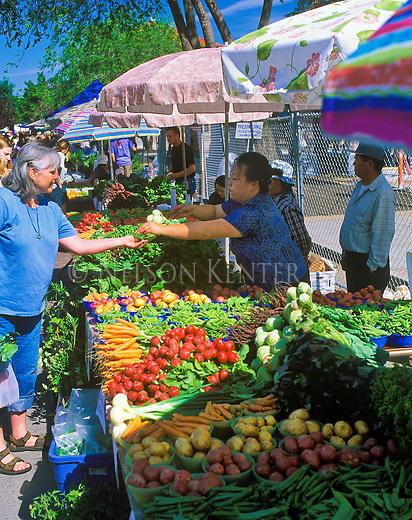 Farmer's Market in downtown Missoula, Montana