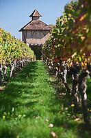 Europe/Europe/France/Midi-Pyrénées/46/Lot/Caillac: pigeonnier dans le vignoble AOC Cahors du  Château  de La Grézette