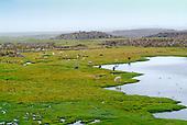 parc national lauca