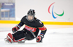 Anthony Gale, Sochi 2014 - Para Ice Hockey // Para-hockey sur glace.<br /> Team Canada takes on Norway in Para Ice Hockey // Équipe Canada affronte Norvège en para-hockey sur glace. 09/03/2014.
