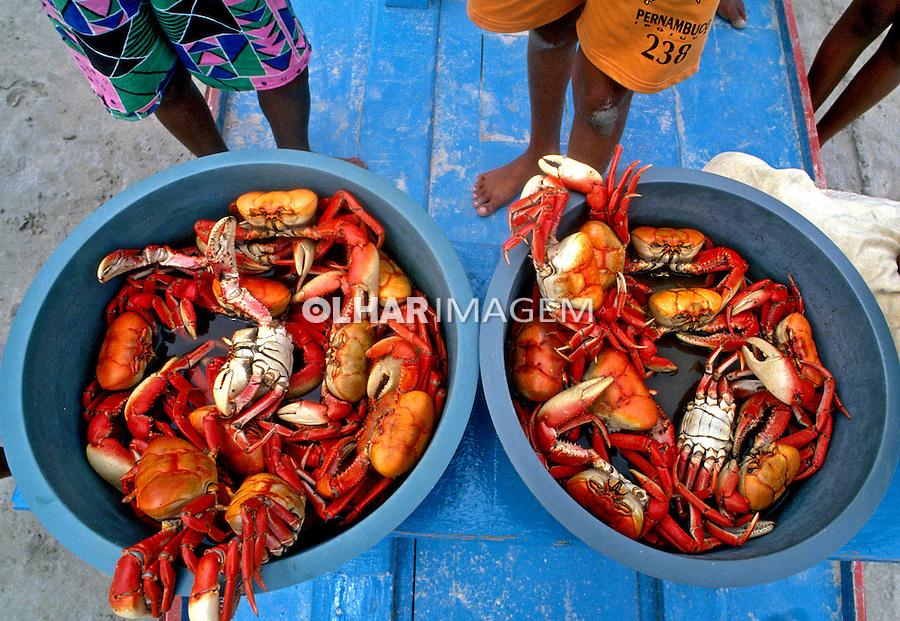 Alimentos. Bacia com caranguejos. Foto: Luciana Whitaker