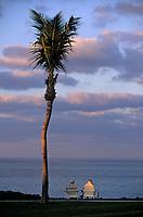 """Iles Bahamas / New Providence et Paradise Island / Nassau: Hotel """"One & Only Océan Club"""" lumière du soir sur le parc et l'océan  //  Bahamas Islands / New Providence and Paradise Island / Nassau: Hotel """"One & Only Ocean Club"""" Evening Light on Park and Ocean"""