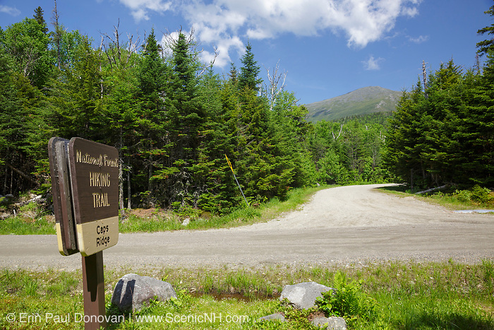 Caps Ridge Trailhead along Jefferson Notch Road in Thompson and Meserves Purchase, New Hampshire USA during the spring months.