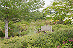 A place to rest.  Bench in Garden, Oregon Gardens, Silverton, Oregon.  An 80 acre botanical garden in the Willamette Valley.  Windy day. This image available for license through exclusive agency.  Please contact the photographer