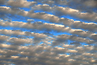 "Altocumulus Undulatus ""billows"" clouds in half-light over Norman Oklahoma."