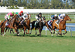11 February 05: Cherokee Queen (no. 3), ridden by Alex Solis and trained by Martin Wolfson, wins the 64th running of the grade 3 Suwannee River Stakes for fillies and mares four years old and upward at Gulfstream Park in Hallandale Beach, Florida.  (Bob Mayberger/Eclipse Sportswire)