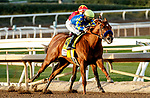 ARCADIA, CA DECEMBER 26: #4 Charlatan, ridden by Mike Smith, after a 8 month layoff takes the lead to win the Runhappy Malibu Stakes (Grade l) on December 26, 2020 at Santa Anita Park in Arcadia, CA. (Photo by Casey Phillips/EclipseSportswire/CSM)