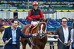 TORONTO, ON - OCTOBER 16: Calgary Cat #7, ridden by Luis Contrera, wins the Nearctic S. at Woodbine Racetrack on October 16, 2016 in Toronto, ON. (Photo by Sophie Shore/Eclipse Sportswire/Getty Images)