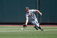 Oregon State outfielder Max Gordon (4) fields a ground ball during Game 11 of the 2013 Men's College World Series against the Mississippi State Bulldogs on June 21, 2013 at TD Ameritrade Park in Omaha, Nebraska. The Bulldogs defeated the Beavers 4-1, to reach the CWS Final and eliminating Oregon State from the tournament. (Andrew Woolley/Four Seam Images)