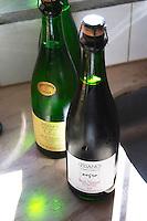 A bottle of sparkling RPF Reserva Personal de la Familia Brut Nature 2004 Blanc de Blanc, backlit in silhouette and a Brut nature Negro red sparkling wine. Bodega Pisano Winery, Progreso, Uruguay, South America
