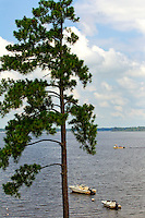Photo is part of a series of images taken at Pamlico Sea Base, a Boy Scouts of America High Adventure Camp located on the Pamlico River south of Washington, NC. The BSA Sea Base program is centered around sea kayaking treks on the North Carolina Outer Banks and sailing programs on the historic Pamlico River...Photography by: Patrick Schneider Photo.com