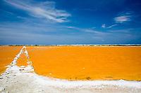 Salt crusted shoreline of a salt pan near Lac Bay, Bonaire Island, Netherland Antilles, Caribbean, Atlantic Ocean