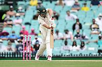8th January 2021; Sydney Cricket Ground, Sydney, New South Wales, Australia; International Test Cricket, Third Test Day Two, Australia versus India; Cameron Green of Australia is caught lbw