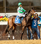 DECEMBER 01, 2018 : Filly Joel in the Demoiselle Stakes at Aqueduct Racetrack on December 24, 2018 in Ozone Park, NY.  Sue Kawczynski/ESW/CSM