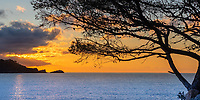 Colorful sunrise on the Mediterranean Sea, the rocks abdnd the trees of pointe Layet  gulf of Saint-Tropez, Azure coast France