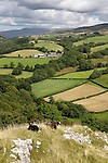 United Kingdom, Wales, Carmarthenshire, near Llandeilo: view from Carreg Cennen Castle over farmland in Brecon Beacons National Park | Grossbritannien, Wales, Carmarthenshire, bei Llandeilo: Blick vom Carreg Cennen Castle ueber Landschaft im Brecon Beacons National Park