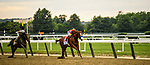 Elmont, NY - JUNE 09: #6, Gronkowski, challenges and #1, Justify, answers with Jockey Mike Smith on their way down the stretch for Trainer Bob Baffert during the 150th running of the Belmont Stakes at Belmont Park on June 9, 2018 in Elmont, New York. (Photo by Carson Dennis/Eclipse Sportswire/Getty Images)