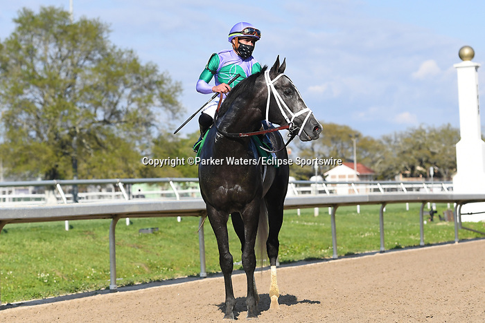 March 20, 2021: Colonel Liam wins the Muniz Memorial Classic during Louisiana Derby Day at Fair Grounds Race Course in New Orleans, Louisiana. Parker Waters/Eclipse Sportswire/CSM