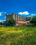 Italien, Toskana, Provinz Siena, bei Chiusdino:  Abbazia San Galgano - Ruinen der Zisterzienserabtei | Italy, Tuscany, Provine ov Siena, near Chiusdino: St Galgano's Cistercian Abbey