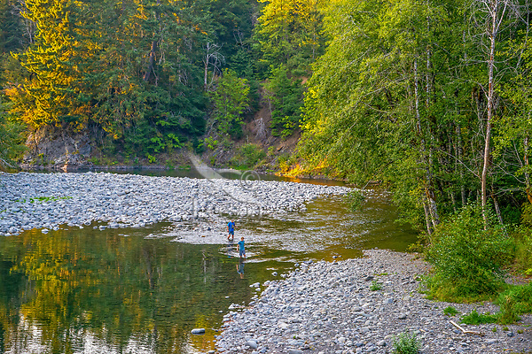 Fly fishing/wading upper Sol Duc River (this is on the Merrill & Ring property).  Olympic Peninsula, WA. Sept., late evening.