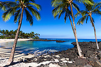 Beautiful white sand beach with black lava rocks surrounding the Pacific Ocean's turquoise water and palm trees on the Big Island of Hawaii