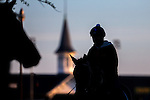 APRIL 29, 2015: Scenes from morning workouts as horses exercise for the Kentucky Derby and Kentucky Oaks at Churchill Downs in Louisville, Kentucky. Jon Durr/ESW/Cal Sport Media