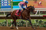 DEL MAR, CA. AUGUST 12:  #1 Run Away ridden by Flavien Prat, in the stretch of the Best Pal Stakes (Grade ll) on August 12, 2017, at Del Mar Thoroughbred Club in Del Mar, CA. (Photo by Casey Phillips/Eclipse Sportswire/Getty )