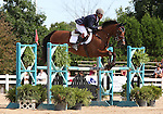 12 July 2009: Bruce (Buck) Davidson Jr. riding Ballynoecastle RM during the showjumping phase of the CIC 3* Maui Jim Horse Trials at Lamplight Equestrian Center in Wayne, Illinois.