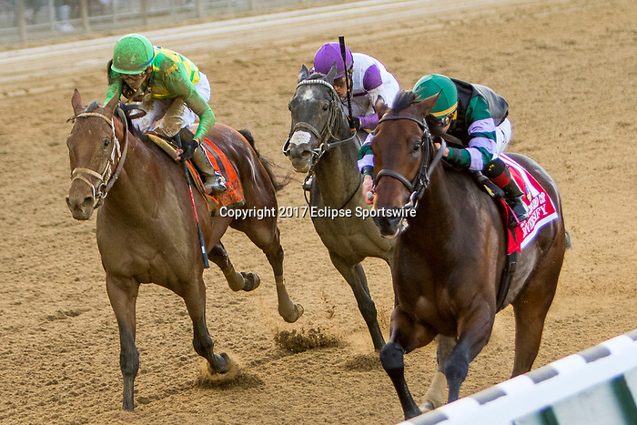 """ELMONT, NEW YORK - OCT 7: Diversity #1, ridden by Irad Ortiz Jr., wins the Jockey Club Gold Cup, a """"Win & You're In' event, at Belmont Park on October 6, 2017 in Elmont, New York. ( Photo by Sue Kawczynski/Eclipse Sportswire/Getty Images)"""