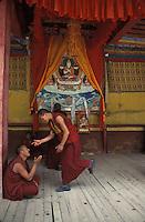 Tibet, Kham<br /> Monks debating at Tajik monastery, near Kandze.