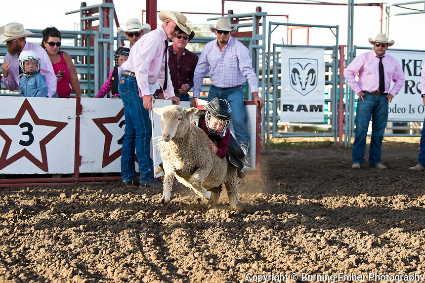 Mutton Bustin at the Helena MT Last Chance Stampede 2nd perf July 26th 2019.  Photo by Josh Homer/Burning Ember Photography.  Photo credit must be given on all uses.