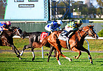 """OCT 03, 2020 :  #2 Gufo with Junior Alvarado aboard, wins the """"Win & You're In"""" Belmont Derby Invitational Stakes, for 3-ear old, on the inner turf, at Belmont Park, Elmont, NY.  Dan Heary/Eclipse Sportswire/CSM"""