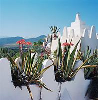 Magical Morocco