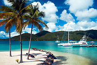 White sand beach, turquoise water, coconut palm trees, and luxury sailing boats, in French La Martinique Island, Caribbean Windward Islands