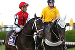May 17, 2014. Ride On Curlin, Joel Rosario up, in the Preakness post parade. California Chrome, Victor Espinoza up, wins the 139th Preakness Stakes at Pimlico Race Course in Baltimore, MD. Ride On Curlin was second. ©Joan Fairman Kanes/ESW/CSM