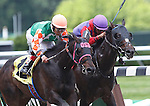 June 8, 2013. Can't Catch Me Now #12, inside), Edgar Prado up, wins race 4, a one-mile race for maidens 3 and older foaled in NY state. #1 El Genio, Luis Saez up (inside) was second.  Belmont Park, Elmont, New York (Joan Fairman Kanes/Eclipse Sportswire)
