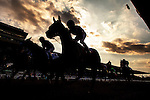 September 27 2014: Horses race in the Awesome Again Stakes  at Santa Anita Park in Arcadia CA. Alex Evers/ESW/CSM