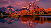 937000031 panoramic view - sunrise light brightens mount moran and the teton range reflected in the snake river with fall colored aspens at oxbow bend in grand tetons national park wyoming