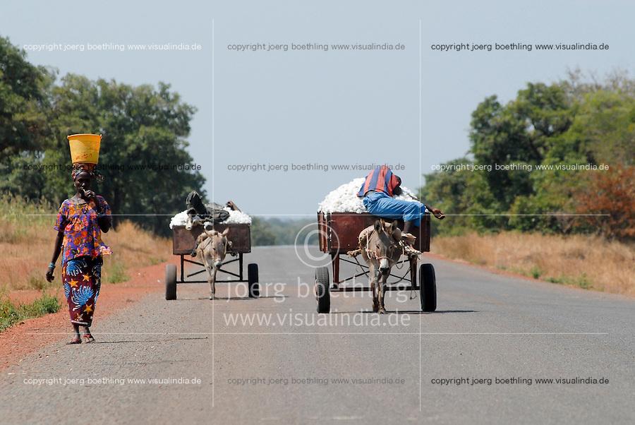 MALI, Bougouni , sleeping farmer transport cotton from field with donkey cart / MALI , Bougouni, schlafende Bauern transportieren Baumwolle mit Eselkarren