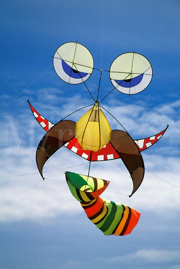 Bearded face kite wearing tie, Grayland, WA