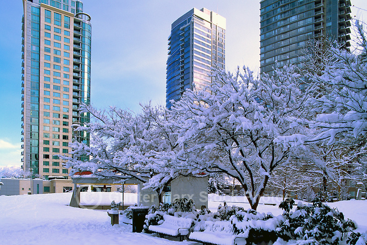 """""""West End"""", Vancouver, BC, British Columbia, Canada - High Rise Apartment / Condominium Buildings, Downtown at """"Coal Harbour"""", Heavy Snowfall after Winter Snow Storm"""