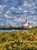 Coquille River Lighthouse with gorse. Bandon, Oregon (Sky has been added)