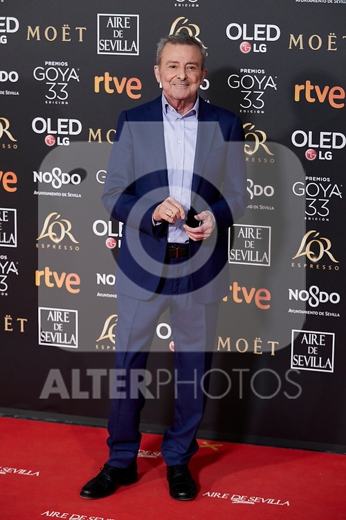 Juan Diego attends to 33rd Goya Awards at Fibes - Conference and Exhibition  in Seville, Spain. February 02, 2019. (ALTERPHOTOS/A. Perez Meca)