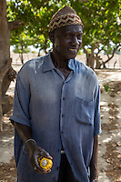 Cashew Nut Farmer Holding Yellow Cashew Apple, near Sokone, Senegal.  The farmer is of the Jola (French: Diola) ethnic group.