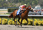 August 1st 2010: Avid by More Than Ready breaks her maiden under Rafael Bejarano at Del Mar Race Track in Del Mar CA.