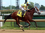 June 21, 2014:  Unbridled Reward and jockey Alan Garcia finish second in the Debutante Stakes (6f, 2yo fillies) at Churchill Downs. Owner John Oxley, trainer Mark Casse. ©Mary M. Meek/ESW/CSM